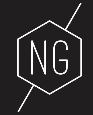 Logo du promoteur immobilier NG PROMOTION