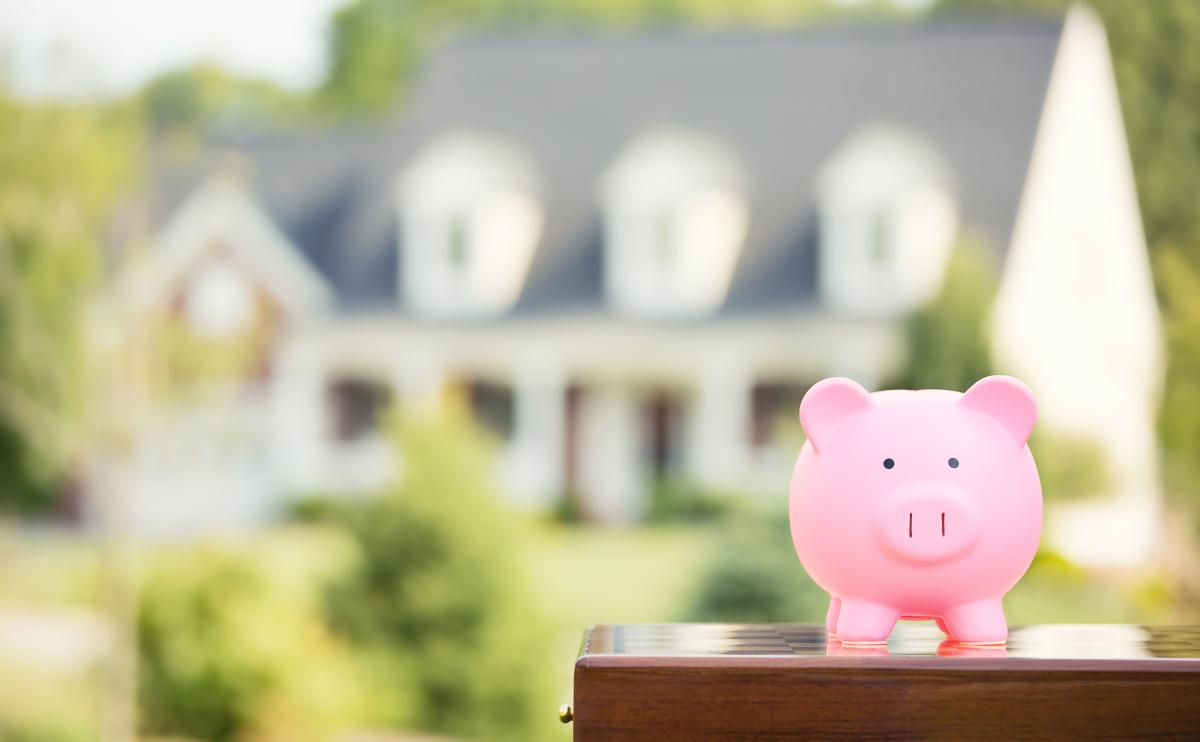 louer appartement montpellier - petit cochon rose et maison en arrière plan