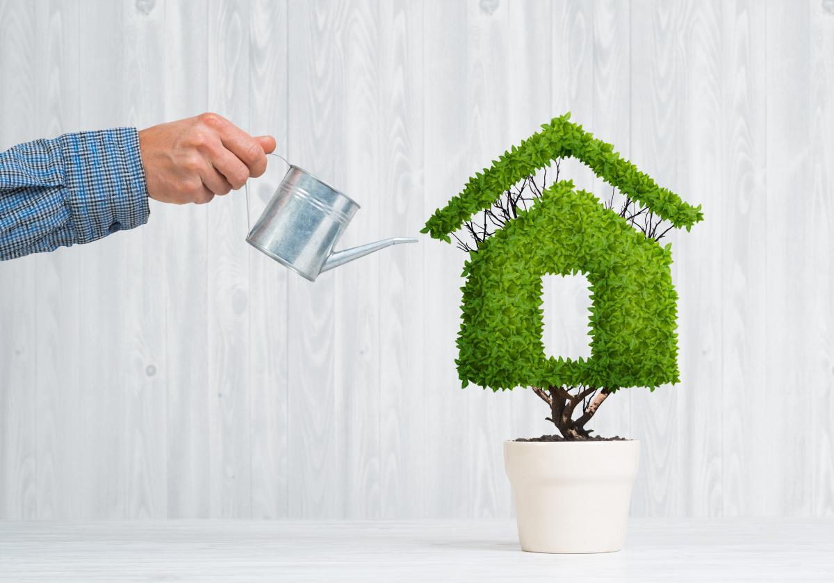 conseil achat immobilier neuf - Concept de l'immobilier neuf écologique avec un arrosoir et une maison verte