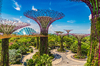 Logement atypique – Gardens by the bay Singapour