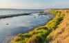 Culture montpelliéraine - vue sur l'étang de Thau