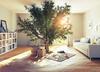 Restanque Montpellier – Vue sur un intérieur avec un arbre planté